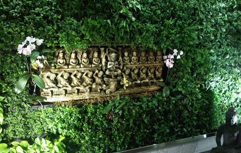 Secret Garden - Living Wall