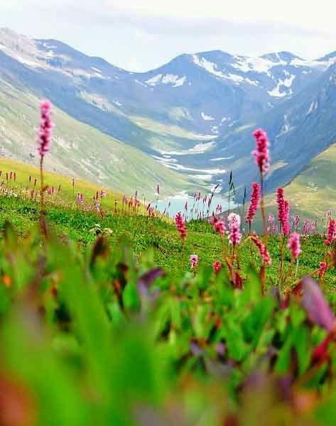 Neelam Valley, Azad Kashmir, Pakistan.