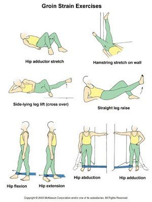 Physical Therapy Exercises In Pictures | Physical Therapy Online www.ThrivePhysica...