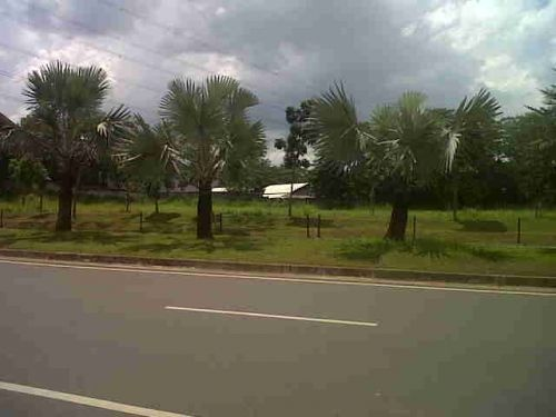 Tanah di BINTARO Sektor 9, SEWKTOR 9 Ciputat Timur  Tangerang Selatan  Banten