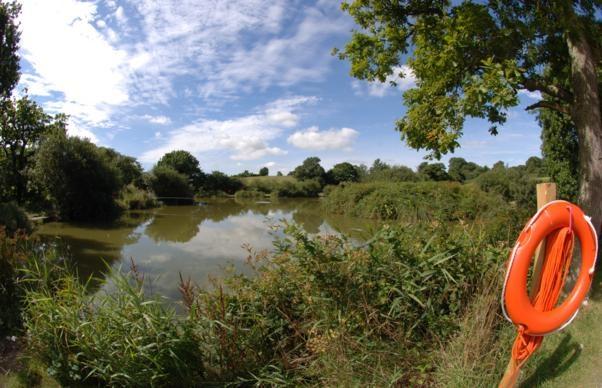 Fishing Lakes | Meadow Lakes