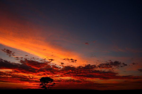 A beautiful shot of a blue sky turning a firey orange at the De Hoop Nature Reserve in the Western Cape by Lance Groenewald. Share your breath-taking sunsets at www.greatestsunsets.com.