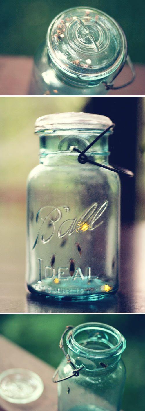 /catching_fireflies.jpg Ball Jars, Catching Fireflies, Lighten Bugs ...