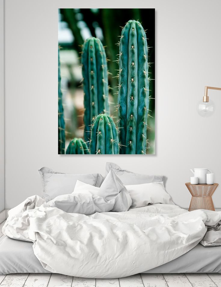 «Cactus 03», Numbered Edition Canvas Print by VanessaGF - From 45€ - Curioos  #cactus #photography #prickly  #nature #succulent #artprint #homedecor @Curioos