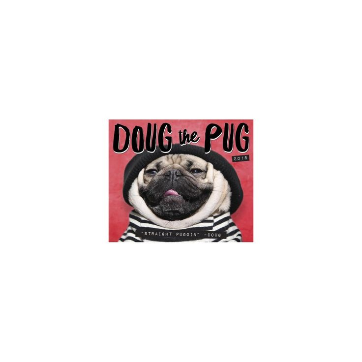 doug the pug calendar 2017 25 best ideas about may 2018 calendar on pinterest 3203