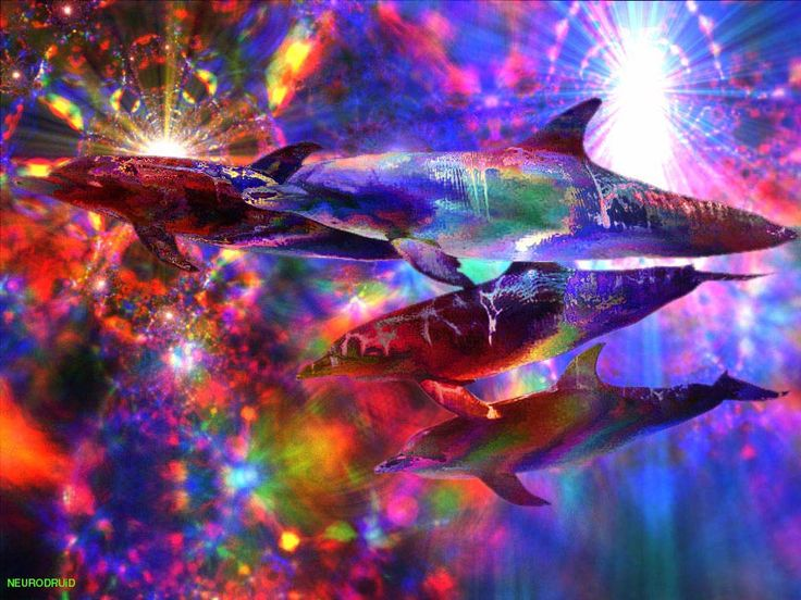Acid Trip Wallpaper Desktop Backgrounds Fractal Art Trippy Aliens Brain Psychedelic