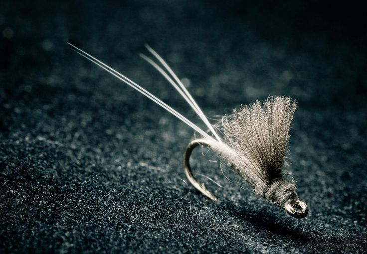 RS2 - a fly you should always have in your flybox