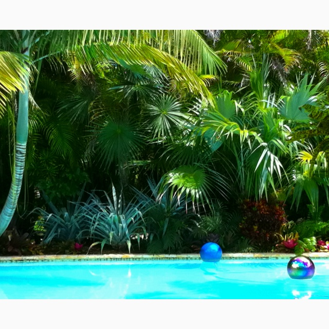 1000 images about above ground pool spa ideas on for Tropical pool gardens
