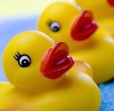 Ernie's rubber duck song-rubber duck/sesame street theme