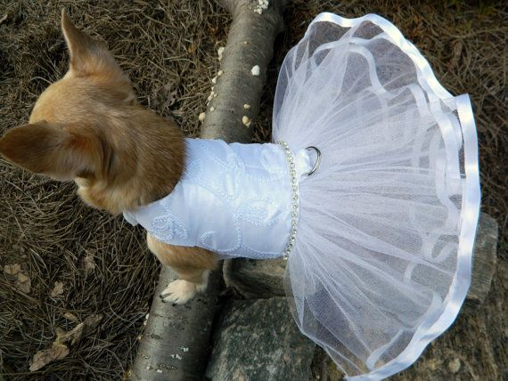 Dog Wedding Flower Girl Dress Fashion Dresses
