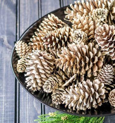 How to make beached pinecones // Toboz fehérítés házilag fehérítővel - karácsonyi dekoráció // Mindy - craft & DIY tutorial collection