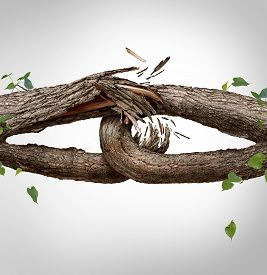 foto of symbols - Broken chain concept and disconnected symbol as two different tree trunks tied and linked together as weak fragilelinks breaking and losing trust or faith metaphor as separation and divorce or broken relationship - JPG