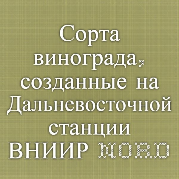 Сорта винограда, созданные на Дальневосточной станции ВНИИР - nordvitis.ru