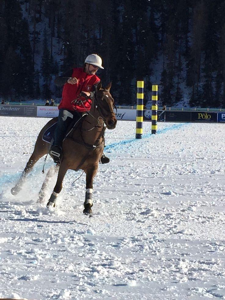 Ready go! Polo in St.Moritz