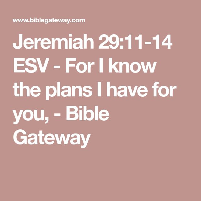 Jeremiah 29:11-14 ESV - For I know the plans I have for you, - Bible Gateway
