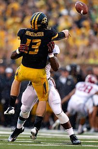 Great year for Missouri sports!!!!    What Every Missouri Fan Would Like To Say To The Tigers Today