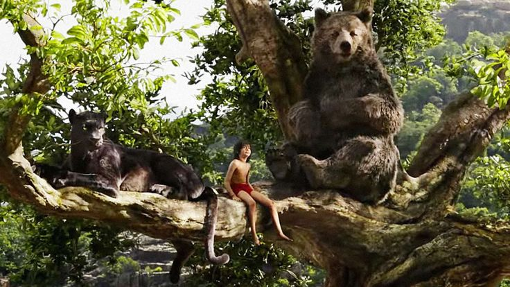 The Jungle Book Review #TheJungleBook #Film # Movies #FilmReview #MovieReview #Disney Though Disney's live-action adaptations of their traditional animated stories have been a mixed bag so far, Jon Favreau and company have delivered a surprising gem in The Jungle Book. Like other a…