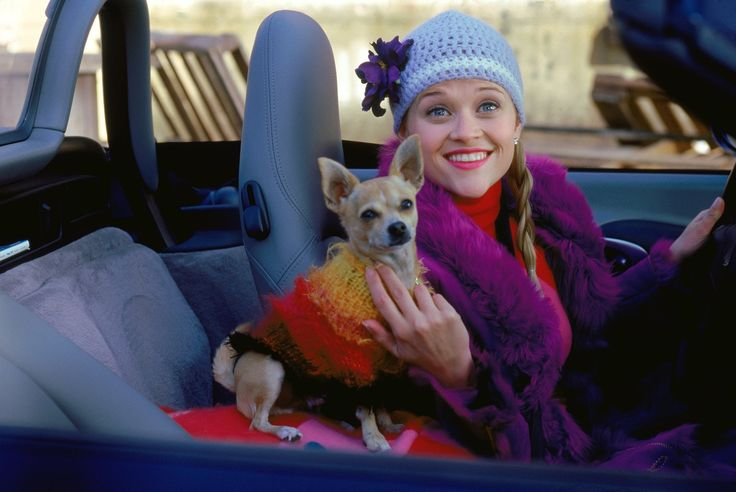 Read Reese Witherspoon's Somber Message About Legally Blonde's Late Pooch, Bruiser Woods
