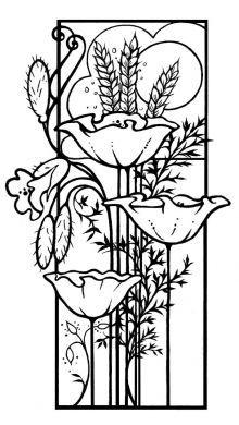 CSS001 Bordered Poppies