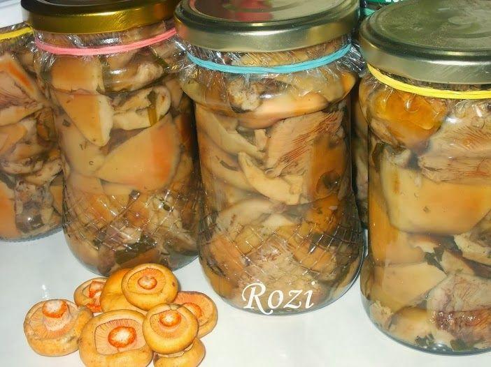 Rozi erdélyi,székely konyhája: Fenyőalja (rizike) gomba savanyúságnak
