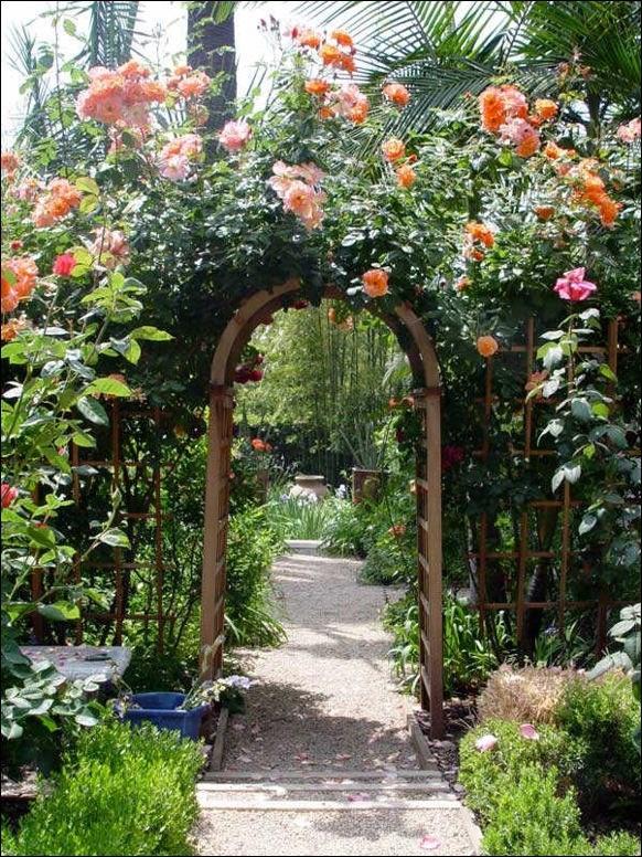 Rose Arch | ☆Gardens Ideas☆ | Pinterest