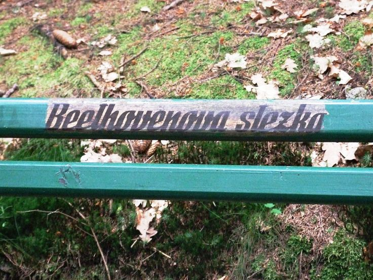 Karlovy Vary - Beethoven trail in a forest surroundings spa