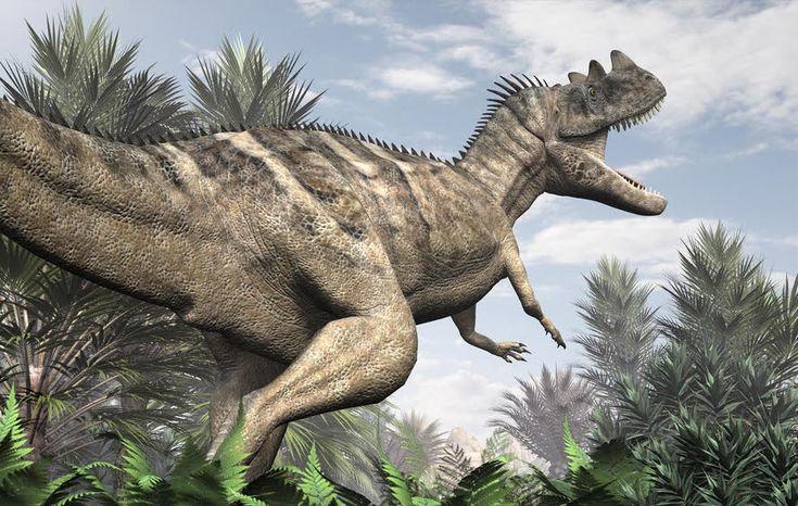 CERATOSAURUS | Ceratosaurus by DryJack