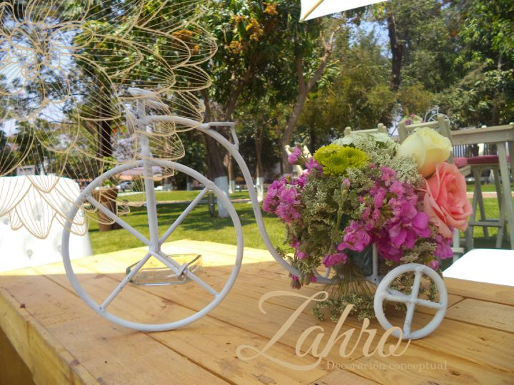 Bicicleta Shabby