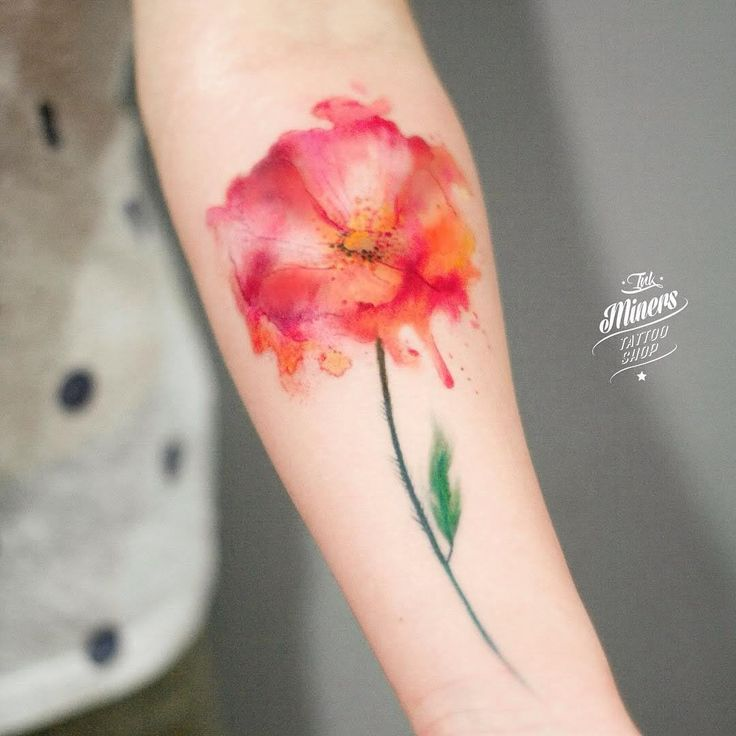 Attractive Watercolor Poppy Flower Tattoo On Forearm