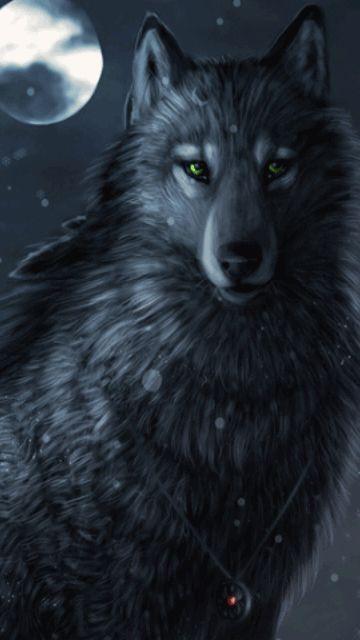 Fantasy White Wolf Wallpaper