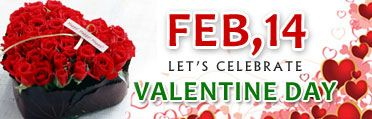 We then ask you about the preferred date of delivery and the time also and make sure to deliver you at that time only. You can send Valentines Day flowers through us to compensate your absence on this special day. http://flowershop18.in/flowers-to-valentine-day.aspx