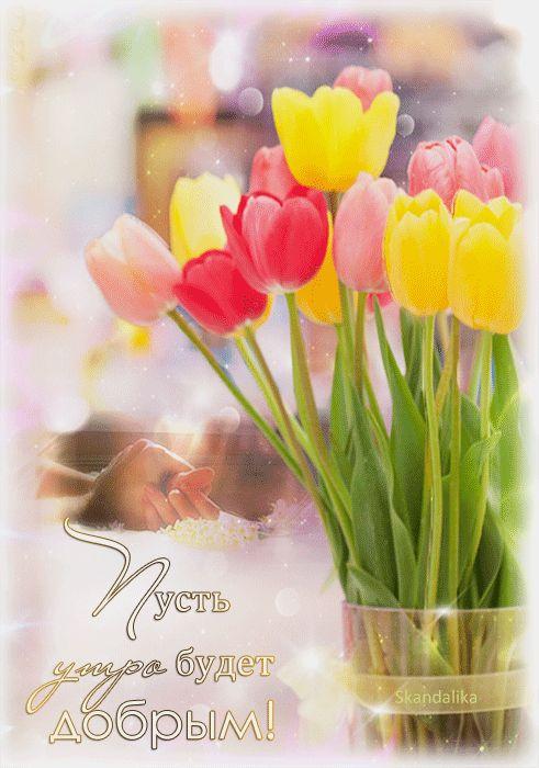 Утро доброе картинка тюльпаны гиф
