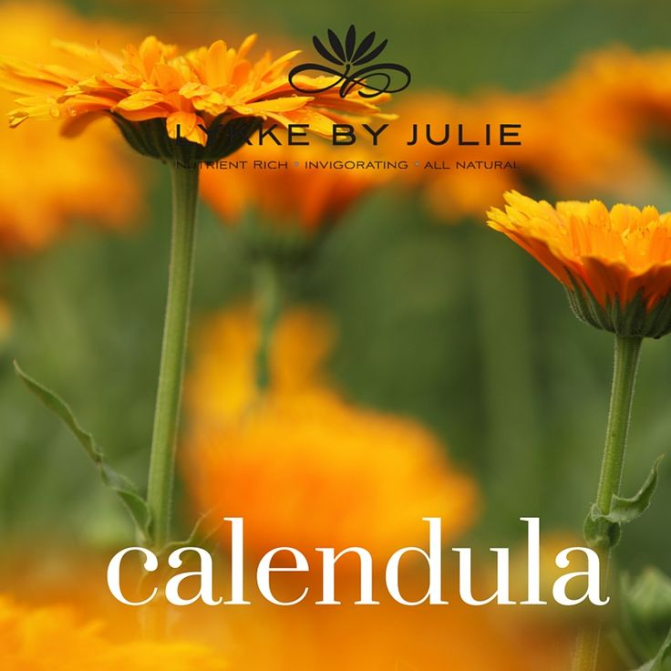 Calendula Oil contains , inter alia, carotenoids, bitter substances , saponin and triterpenalkoholer . It is astringent , antiseptic, anti-inflammatory , antifungal and wound healing . Calendula Oil is used for wounds , eczema and skin problems.