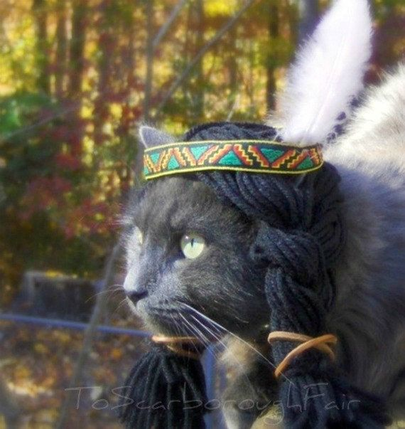 Thanksgiving Cat Costume Pet Halloween by ToScarboroughFair