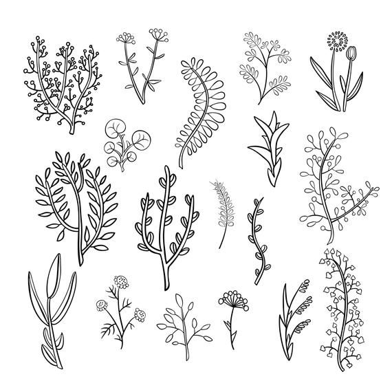 18 Botanical Clipart Illustration Etsy In 2021 Flower Doodles How To Draw Hands Clip Art