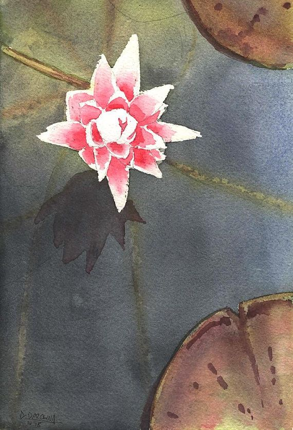 Original Watercolor Painting Water Lily Flower Aquarelle Wall