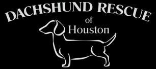 """Small group of doxie lovers that all happen to call Houston """"Home"""". They love the dachshund breed and can't bear to think of any dachshunds suffering. They have many foster parents and volunteers. If you would like to help, please consider being a foster parent or volunteer."""