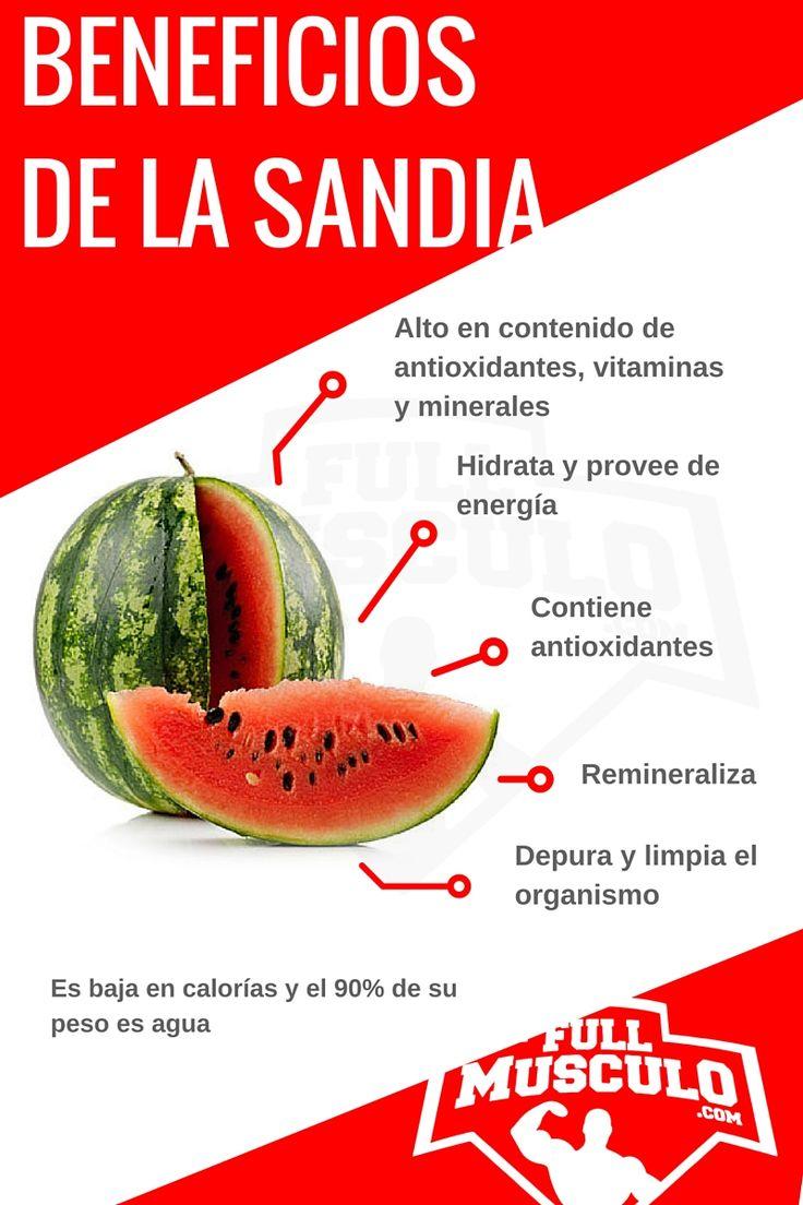 infografía de los beneficios de la patilla