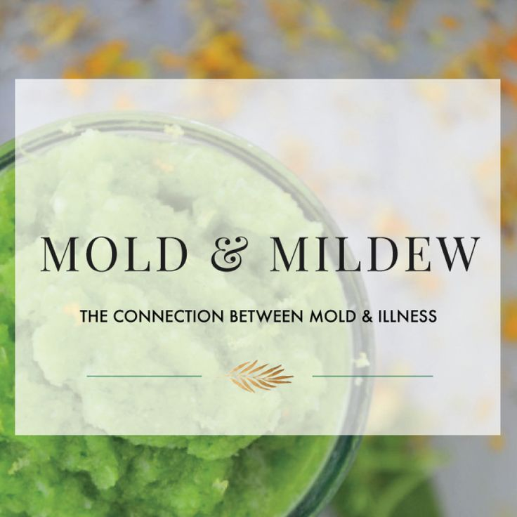 Mold: The Connection Between Mold & Illness