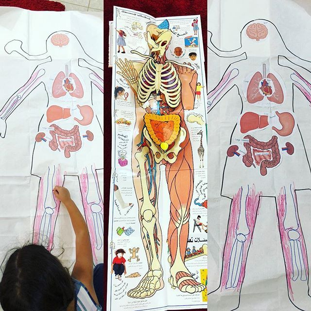 So much fun learning about the body this week! We slowly worked on our large body drawings by adding in the organs and talking about why we need them - then moving on to bones and muscles today- love how these fold into books- inspired by the poster in the middle - thank you @happyhomelearning for bringing it in! . . . #bodyposter #organs #skeleton #muscles-#eyfs #homeeducator #homeschooling #homeeducation #teachermama #mamateachesme #scienceathome #insideourbody #artattack #project…