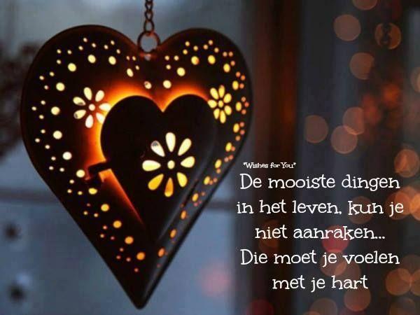 Voelen met je hart...L.Loe