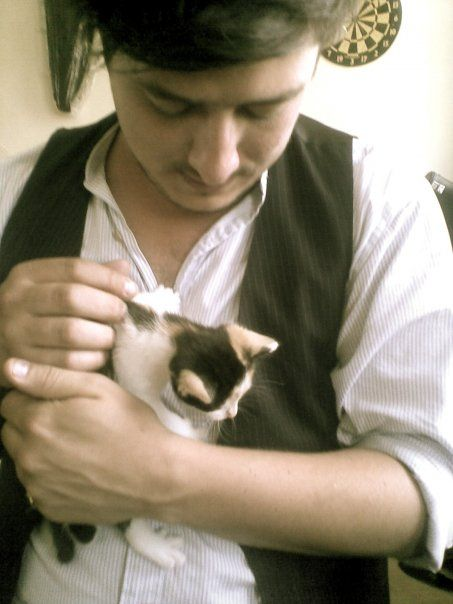 Marcus Mumford and a kitten... I think I just died. So cute.