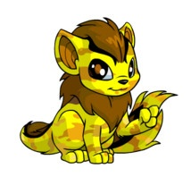 113 Best Neopets Images On Pinterest Auction Babys And Cat