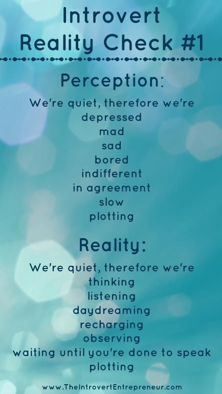 "Introvert Reality Check #1 - ""We're quiet, therefore we're..."" the perception and reality. I enjoy the last point...plotting. muahaha."