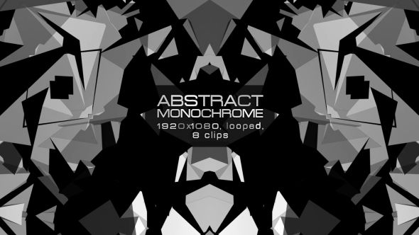 Abstract Monochrome Video Animation | 8 clips | Full HD 1920×1080 | Looped | H.264 | Can use for VJ, club, music perfomance, party, concert, presentation | #black #disco #dynamic #edm #fast #loop #monochrome #moving #music #shape #stripes #techno #trap #vj #white