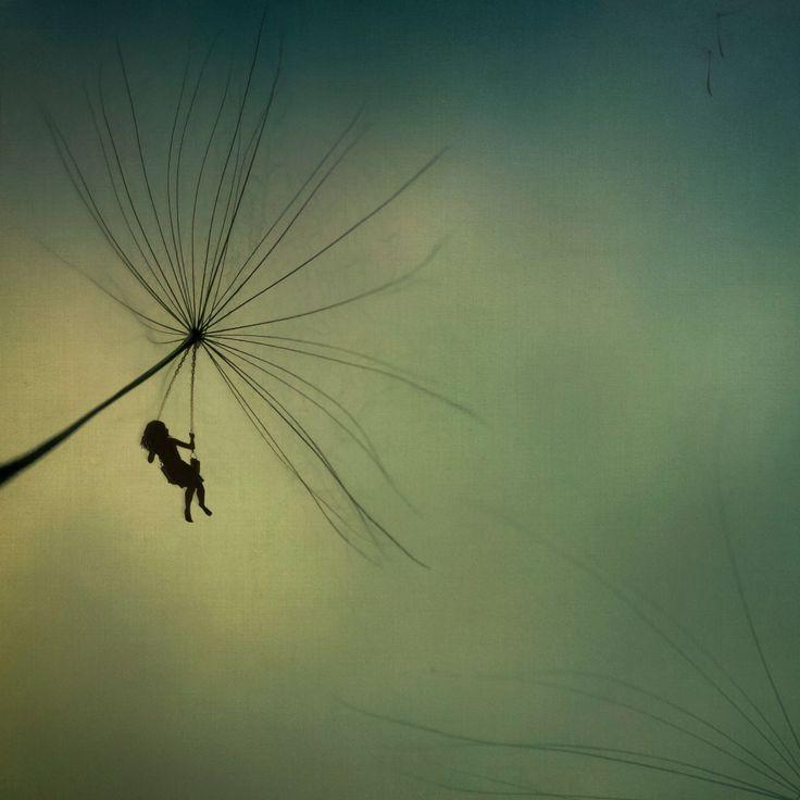 The Wish ©GChappelle