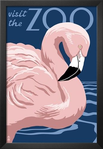 Flamingo - Visit the Zoo Posters at AllPosters.com