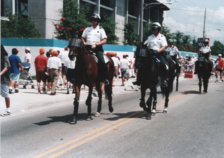 Orlando florida world cup orange county sheriff 39 s - Orange county sheriffs office florida ...