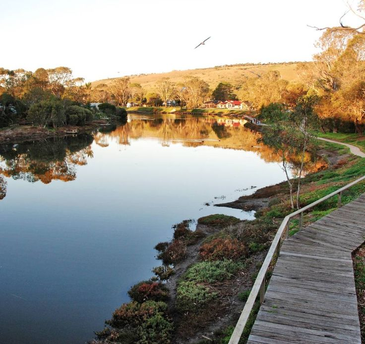 Explore McLaren Vale's surroundings and wander the walking trails along the Onkaparinga River...the perfect way to relax this summer.  Click on the image to learn more about the Onkaparinga region.