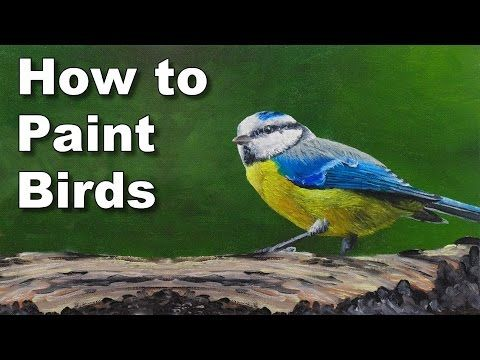 how to paint birds in oil blue tit time lapse painting tutorial - YouTube